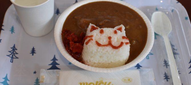 猫の島へ。宮城県田代島の旅(2)〜島のカフェでのんびりと〜