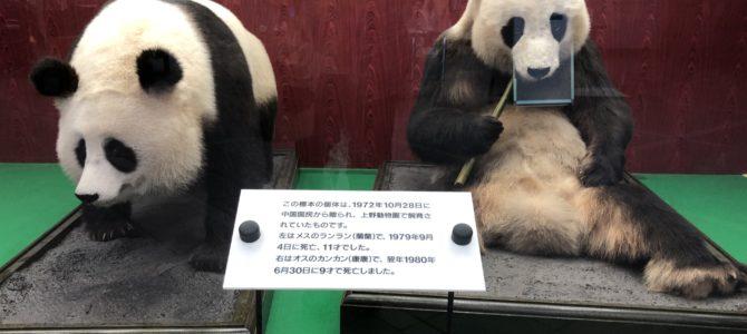 東京小さな日帰り旅 〜国立・多摩動物公園〜