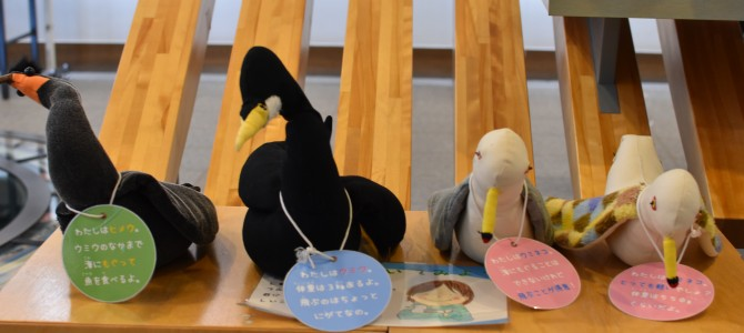 海鳥情報の総合センター in 北海道羽幌(7)