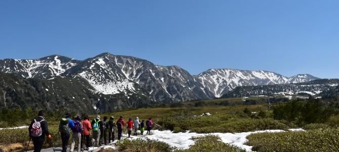 春でも雪に出会える!日本を代表する立山でスノーシュー♪