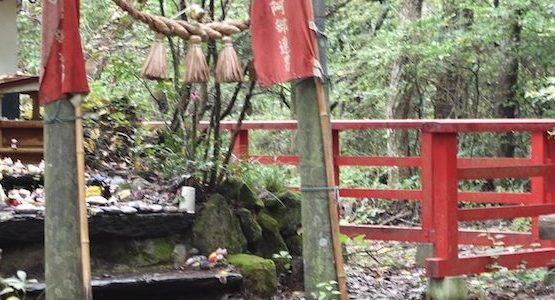 猫の島へ。宮城県田代島の旅(1)〜猫に諭された島内散策〜